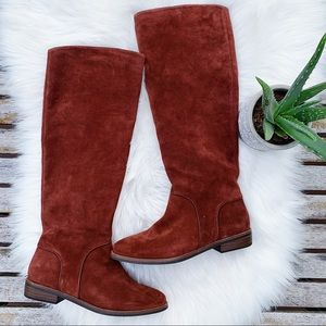 UGG Daley Tall Boot Size 6 NEW $250